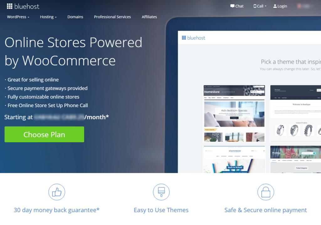 Bluehost eCommerce Hosting Info